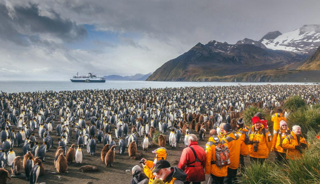 Quark expeditions georgie du sud et peninsule antarctique
